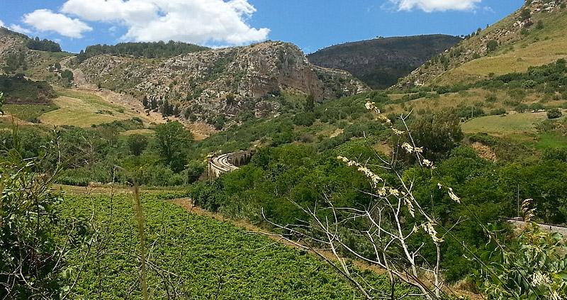The railroad in the hilly terrain near Segesta