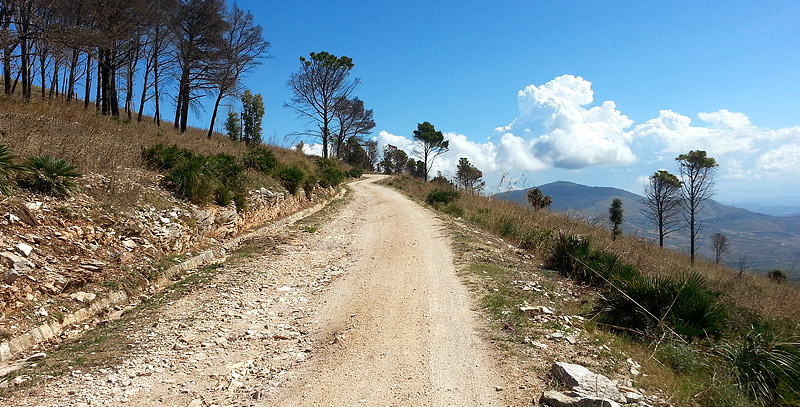 Following the dirt road on Monte Inici.