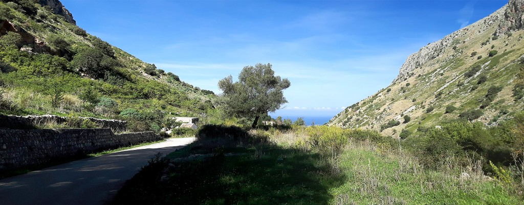 At around 5 km into the climb