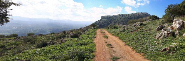 Monte Palmeto, the descent