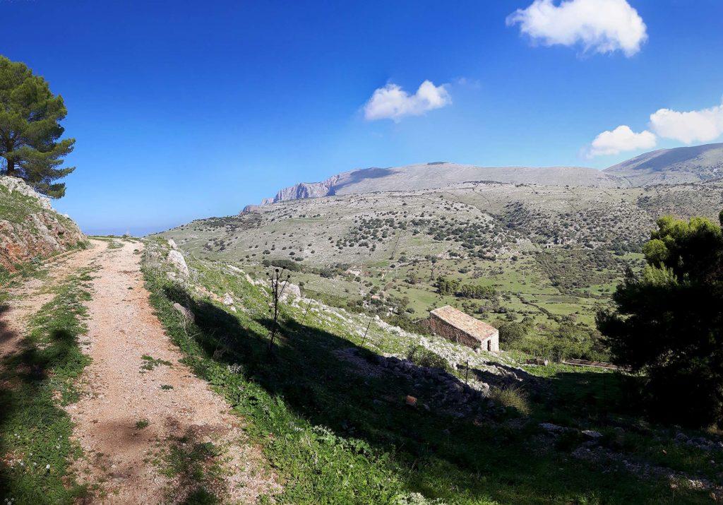 4 km into the climb